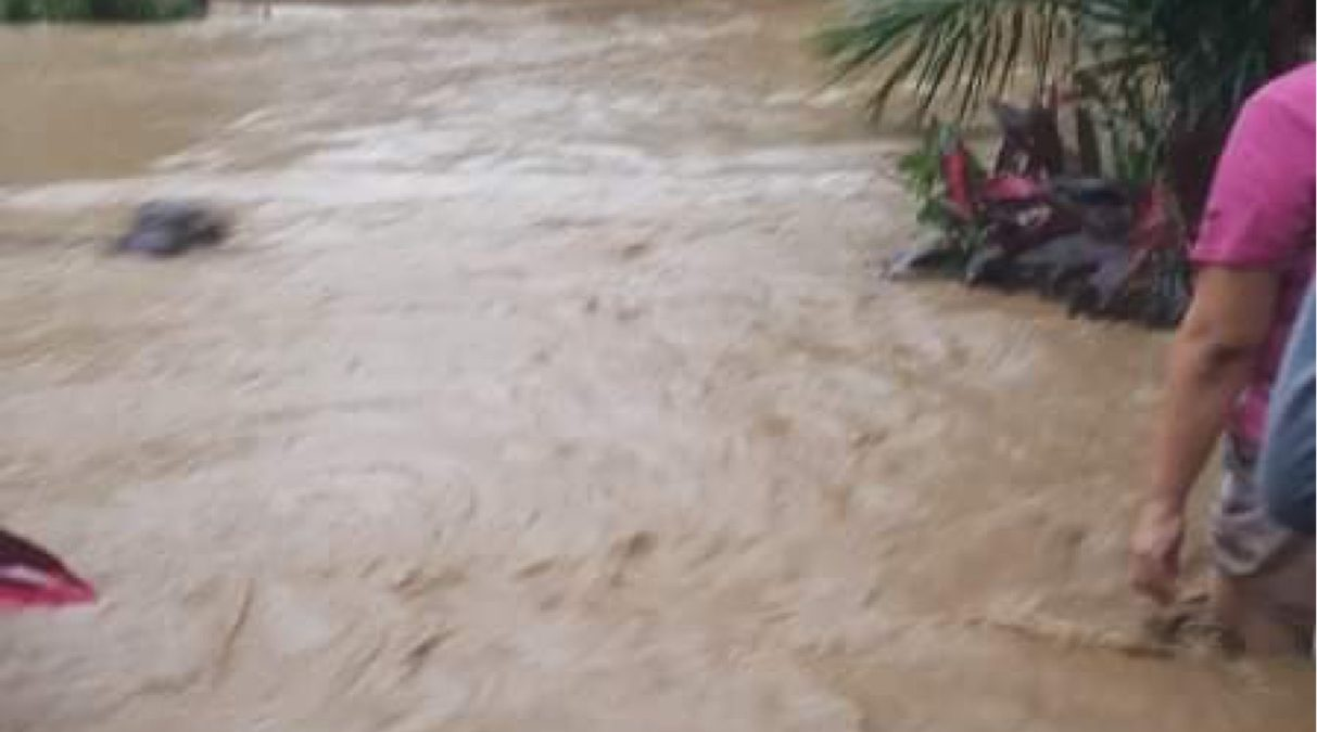 Typhoon: Ulysses PH in REINA area